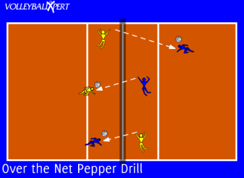 Over the Net Pepper Drill