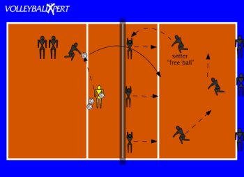 Free Ball: Pass, Set, Cover, and Catch